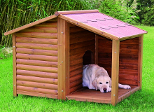 Hondenhokken for Overdekt terras model